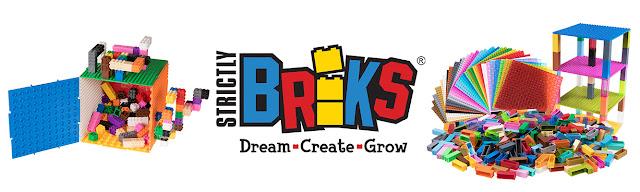 Strickly Briks Logo
