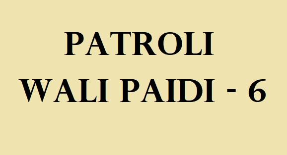 serial wali paidi abdullah badri