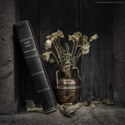 Obras Espiritistas ~ Allan Kardec