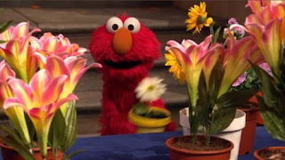 Elmo, Sesame Street Episode 4403 The Flower Show season 44