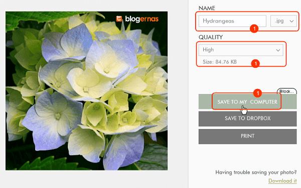Cara Memperkecil Foto secara Online di Situs Fotor
