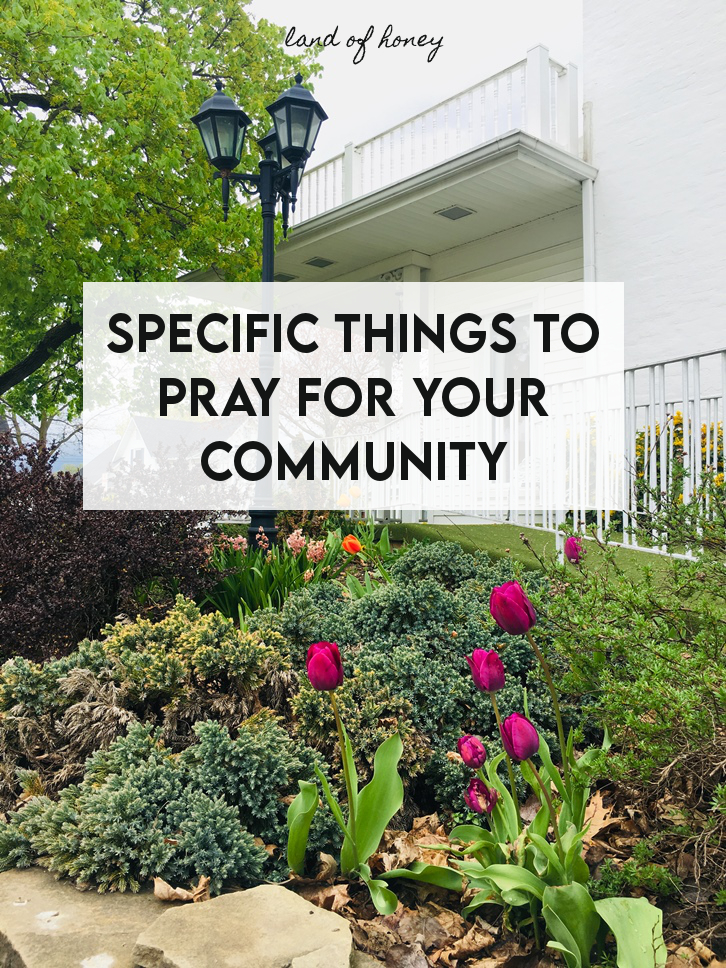 Specific things you can be praying about for your community | Land of Honey