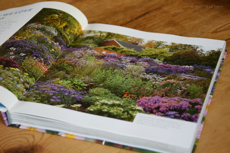 Libro The plant lover's guide to asters.  Paul Picton y Helen Picton