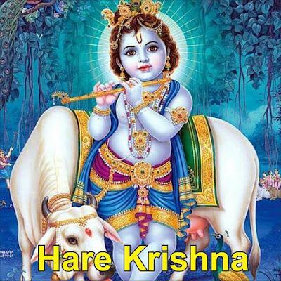 Hare Krishna ao vivo