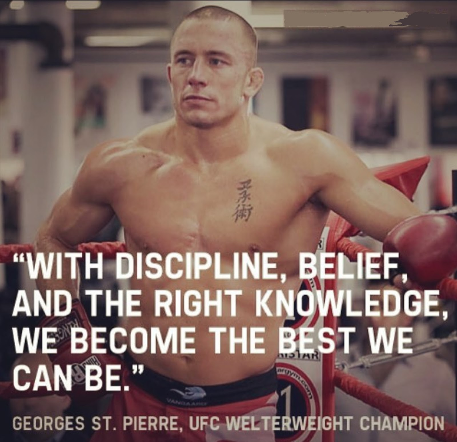 GEORGES ST PIERRE 3