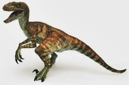 Velociraptor - वेलोसिरेप्टर