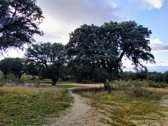 rutas de senderismo sin salir de Madrid