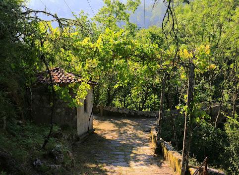W krainie zielonego wina czyli migawki z portugalskich wakacji