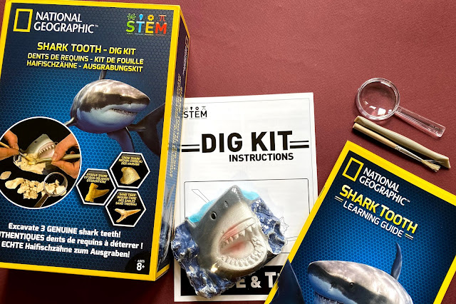 The contents of the shark tooth dig kit includes a block with 3 teeth hidden in, a digging tool, brush, magnifying glass instructions and learning guide
