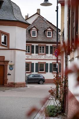 Pfälzer Mandelpfad | Etappe 05 Edenkoben – Birkweiler | Wandern Südliche Weinstraße | Mandelblüte Pfalz 10