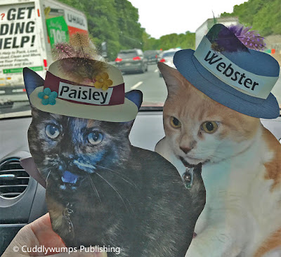 Flat Cats stuck in traffic, somewhere in Virginia
