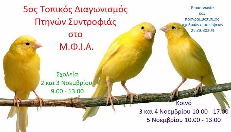 Διαγωνισμός Πτηνών Συντροφιάς στο Μουσείο Φυσικής Ιστορίας Αλεξανδρούπολης