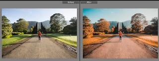 Download preset nature free preset lightroom vol 1 (nature orange)