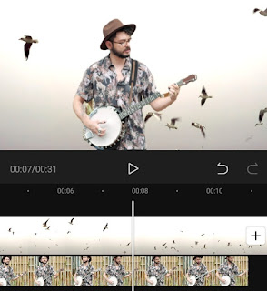how to remove background from video