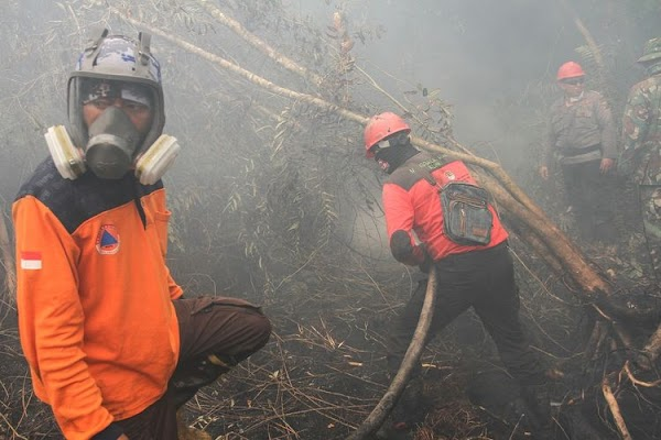 Dari Sesak Nafas hingga Masalah Pada Jantung, Berikut Dampak Buruk dari Asap Kebakaran (Karhutla)
