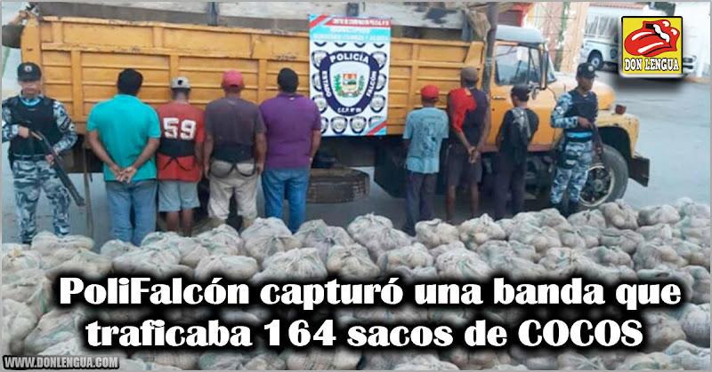 PoliFalcón capturó una banda que traficaba 164 sacos de COCOS