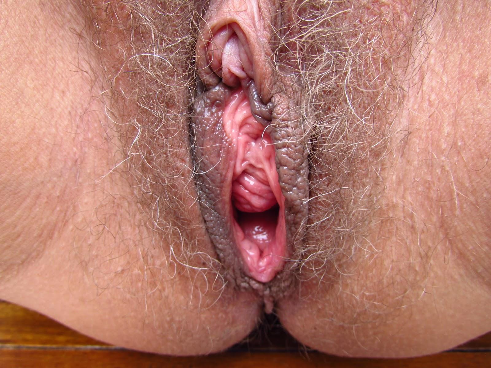 sexhibition våt vagina