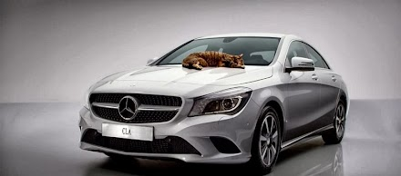 Mercedes-Benz Cat Content mit CLA - the most aerodynamic serial car worldwid ( 1 Video )