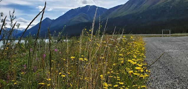 Rest area in Kluane Lake Alaska Highway Yukon Territory Canada