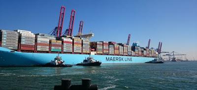 إعادة فتح ميناء سفاجا