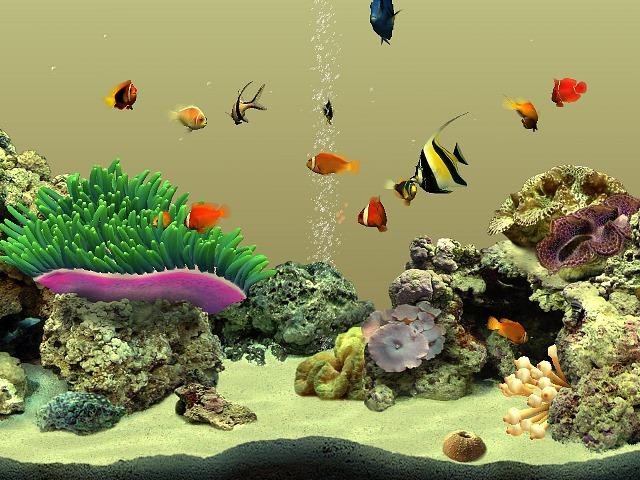 protetor de tela aquario vivo