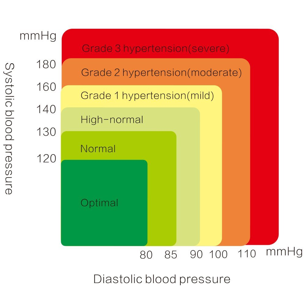 Circulatory strain chart what your blood pressure numbers really circulatory strain chart what your blood pressure numbers really mean knowing can save your life geenschuldenfo Images