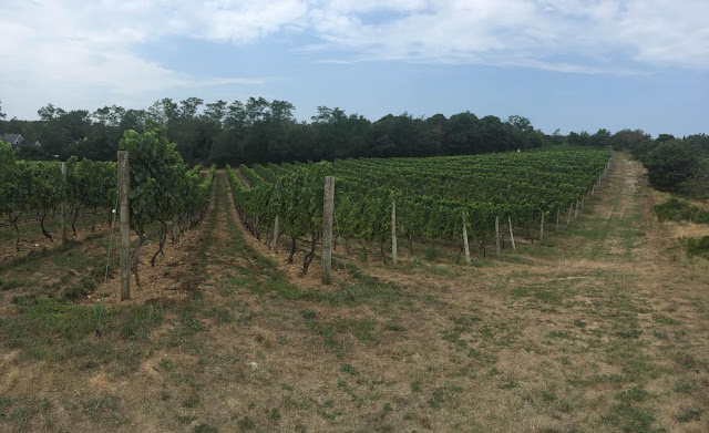 Truro Vineyards
