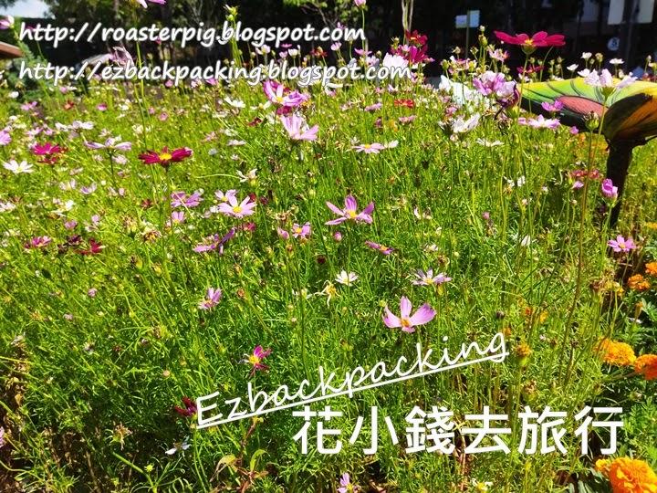 荔枝角公園花圃