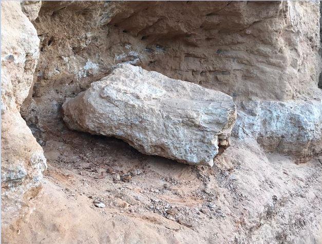 Fóssil de dinossauro é encontrado em obra rodoviária em Marília, no interior de SP