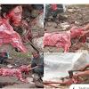 SUNGGUH BIADAB.Pasukan,Pasukan Israel Membunuh Dan Memakan Palestina Hidup Hidup