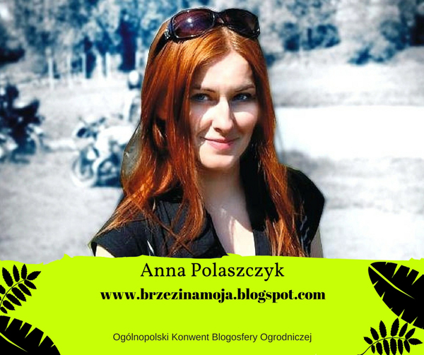 Brzezina Moja Konwent Blogosfery Ogrodniczej