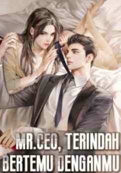Novel Mr.CEO, Terindah Bertemu Denganmu Karya Bella Full Episode