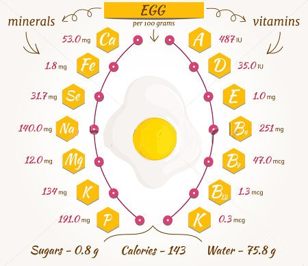 Stay Healthy by Counting Calories In An Egg!