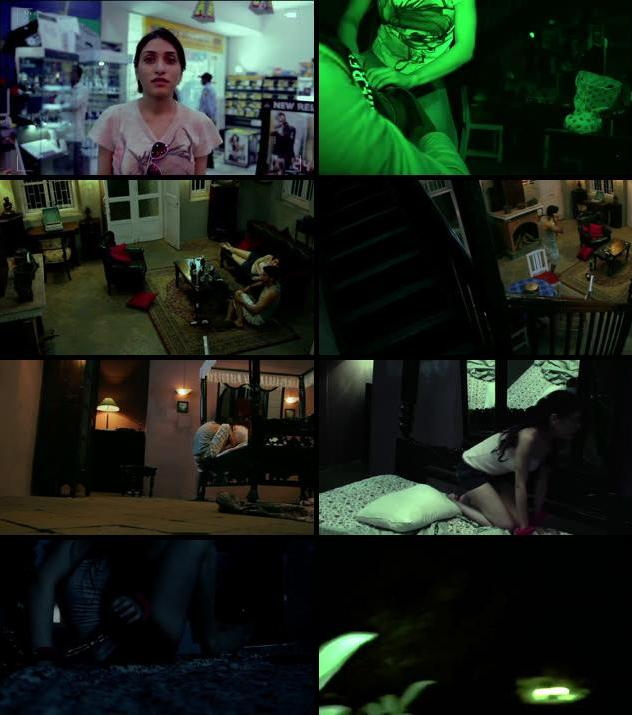 Ragini Mms 2011 Hindi 480p HDRip 300mb