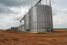 Dominion Farms Grain Drying and Storage