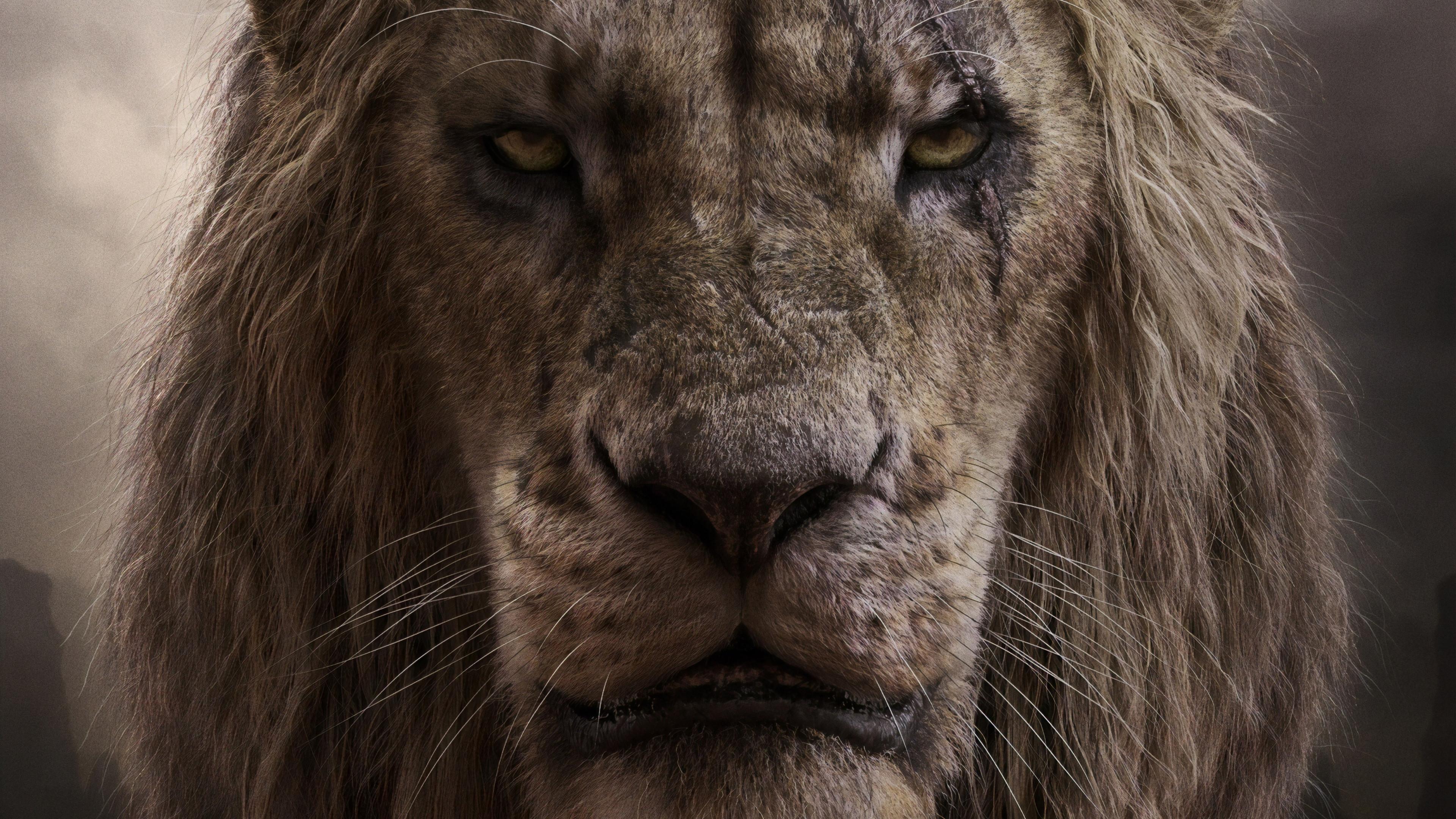 The Lion King 2019 Scar 4k Wallpaper 2