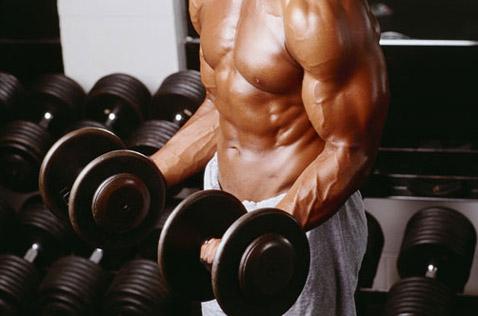 Rutinas para Bíceps