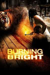 Burning Bright 2010 Dual Audio Hindi - English 300MB Full Movie Download BRRip