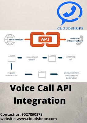 Voice call API Integration