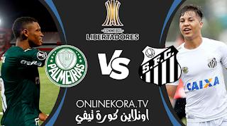 مشاهدة مباراة بالميراس وسانتوس بث مباشر اليوم 30-01-2021 في كأس الليبرتادوريس