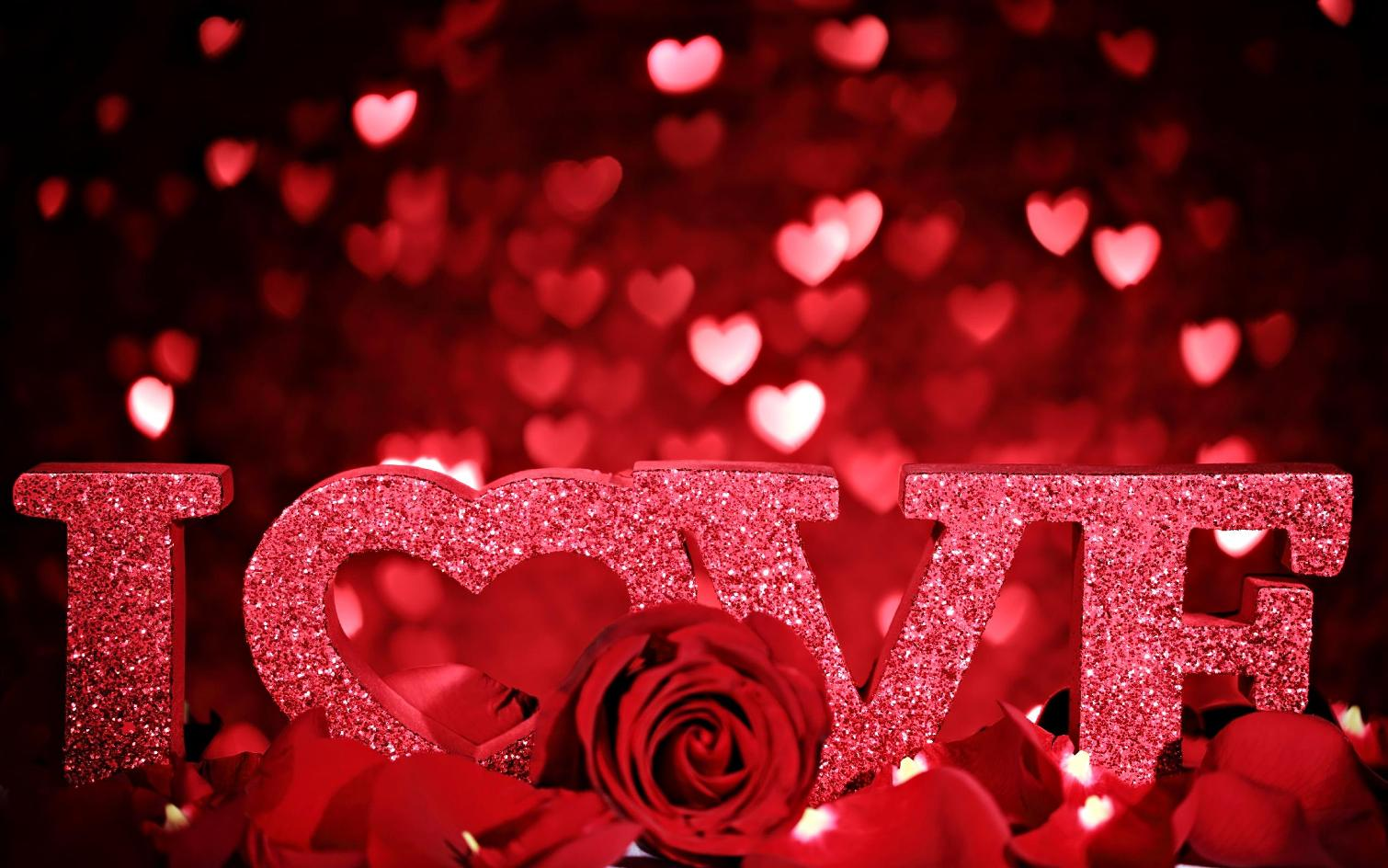 beautiful red love wallpaper
