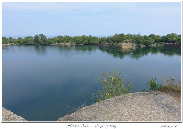 Halibut Point: ... the quarry today...