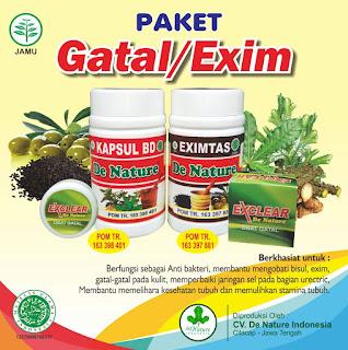obat tradisional gatal pada buah zakar paling mujarab