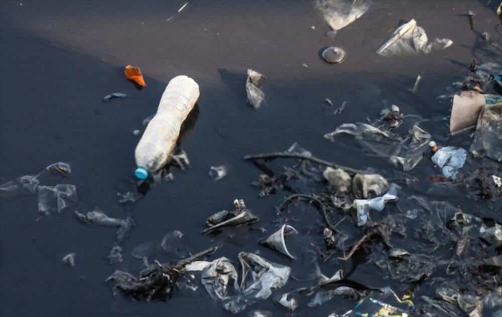 পরিবেশ দূষণ ও তার প্রতিকার (রচনা) | Environmental pollution and its remedies