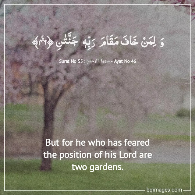 Most important Quranic Verses