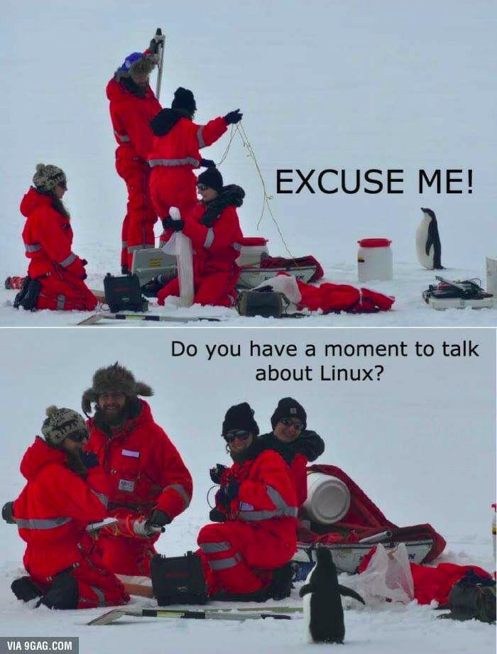 do you have a moment to talk about linux