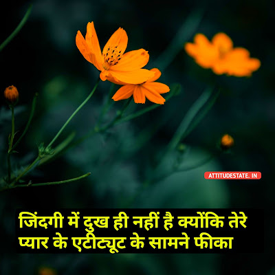 boy love attitude status in hindi