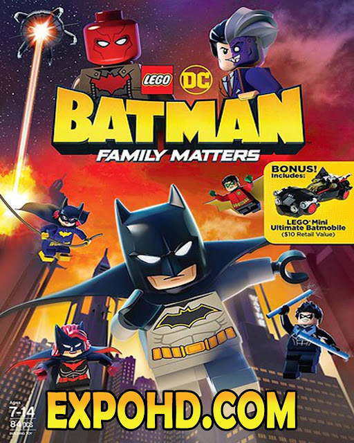 LEGO DC Batman Family Matters 2019 Full Movie | Dual Audio 480p | 720p | HDRip x261 [Download] G.Drive