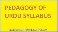 b.ed first year syllabus in hindi and english