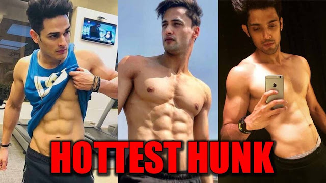 Tellywood : Priyank Sharma VS Asim Riaz VS Parth Samthaan: The Hottest Young Hunk of TV?